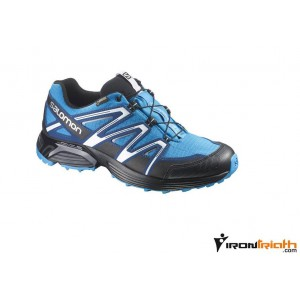 Zapatillas trail Salomon XT Hornet GTX